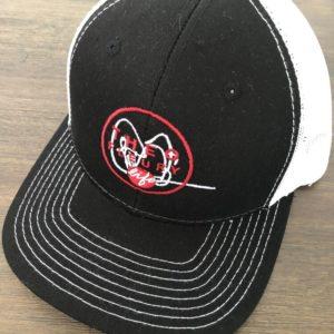 Theo's hat